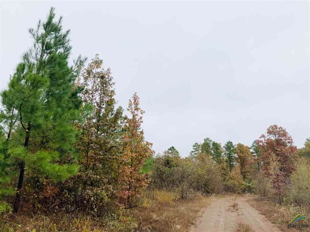 Lot D Cr 2310, Lone Star, TX 75668 (MLS #10115591) :: The Wampler Wolf Team