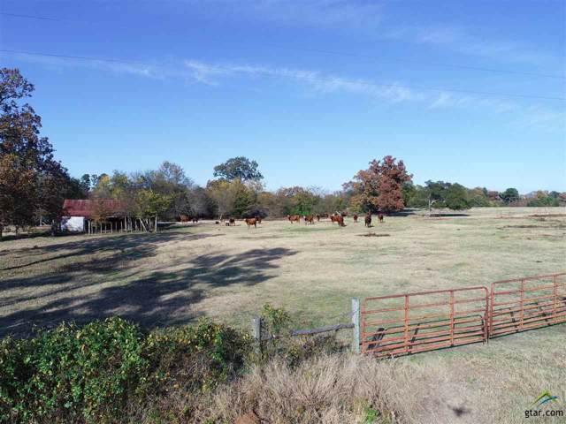 000 County Road Se 4250, Mt Vernon, TX 75457 (MLS #10115655) :: The Wampler Wolf Team