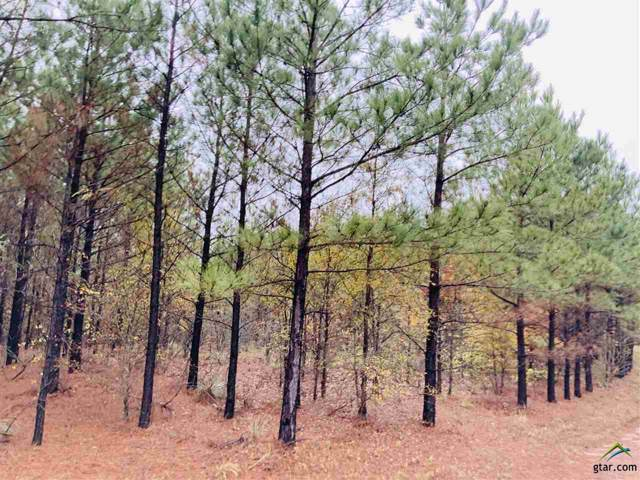 Lot G Cr 2303, Lone Star, TX 75668 (MLS #10115682) :: The Wampler Wolf Team