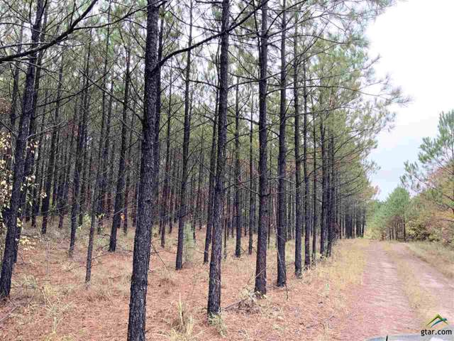 Lot E Cr 2310, Lone Star, TX 75668 (MLS #10115684) :: The Wampler Wolf Team