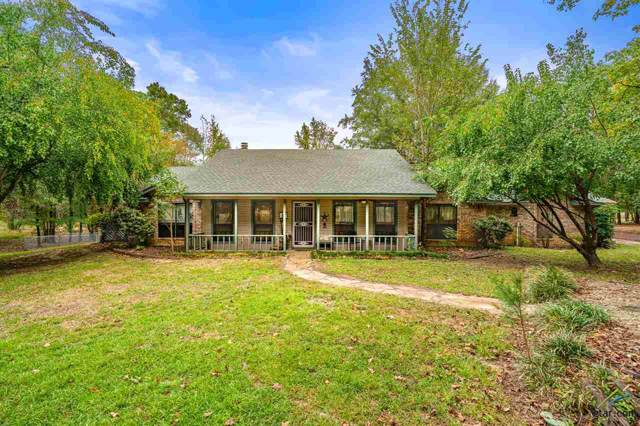 381 County Road 3289, Quitman, TX 75783 (MLS #10115826) :: The Wampler Wolf Team