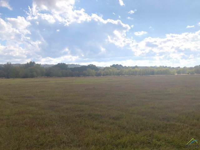 Tract 4 Cr 3305, Jacksonville, TX 75766 (MLS #10115863) :: The Wampler Wolf Team