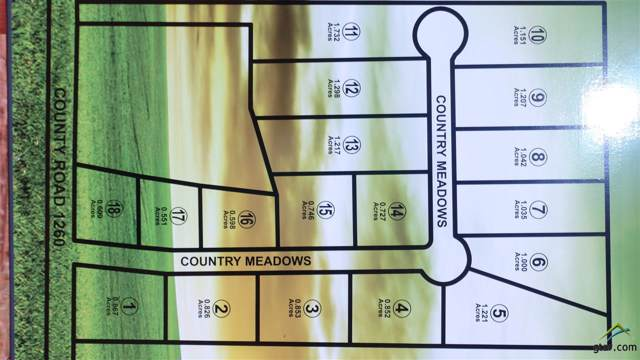 21827 Country Meadows, Bullard, TX 75757 (MLS #10115895) :: RE/MAX Impact