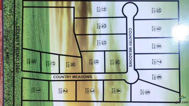 21815 Country Meadows, Bullard, TX 75757 (MLS #10115899) :: RE/MAX Impact