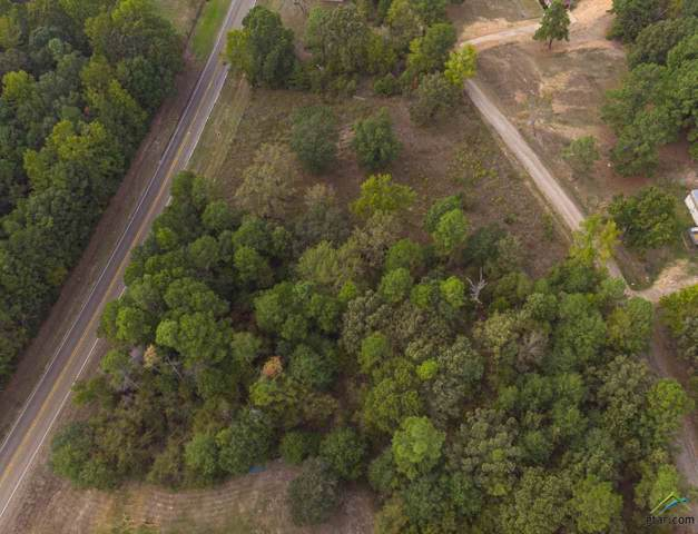 5060 County Road 4317, Larue, TX 75770 (MLS #10116022) :: The Wampler Wolf Team