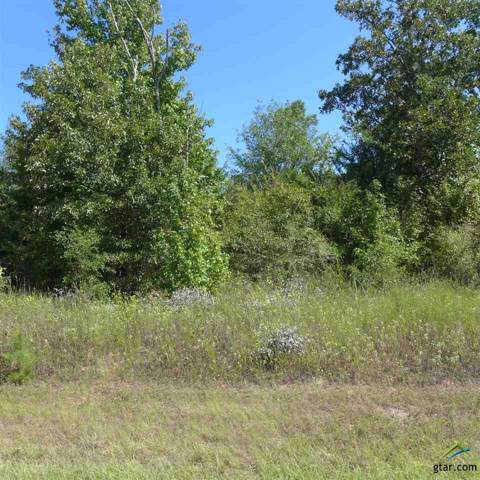 TBD Skinner Lane, Longview, TX 75605 (MLS #10116114) :: The Wampler Wolf Team