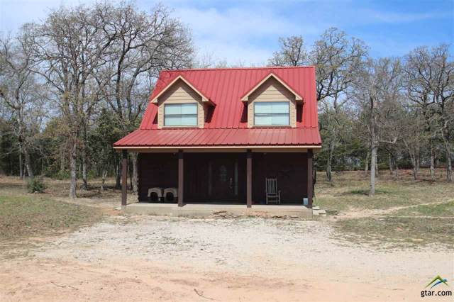 6832 Buggy Hub Trail, Athens, TX 75751 (MLS #10116205) :: The Wampler Wolf Team