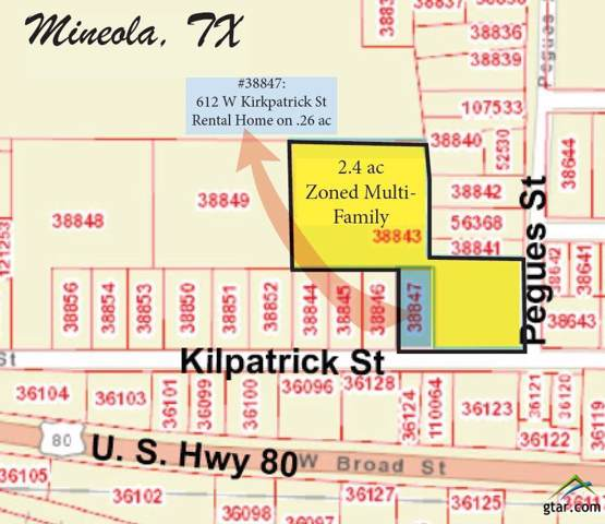 101 Pegues Street, Mineola, TX 75773 (MLS #10116212) :: The Wampler Wolf Team