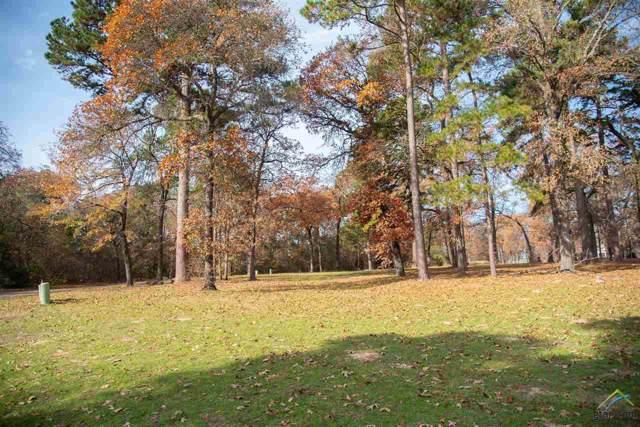 Dogwood Lakes Circle, Bullard, TX 75757 (MLS #10116232) :: Griffin Real Estate Group