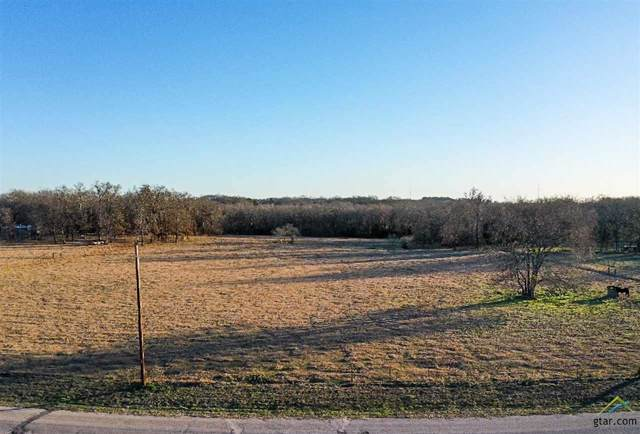 920 County Road 3800, Athens, TX 75752 (MLS #10117123) :: The Wampler Wolf Team