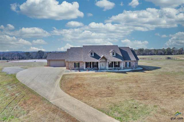 323 Old Sh 31, Kilgore, TX 75662 (MLS #10117183) :: RE/MAX Professionals - The Burks Team