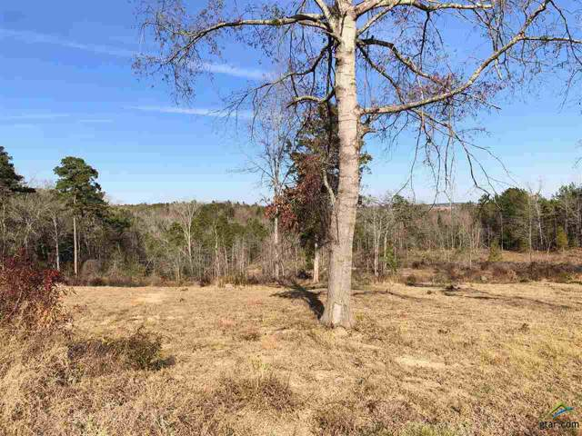 5876 W Cr 447, Laneville, TX 75667 (MLS #10117338) :: The Wampler Wolf Team