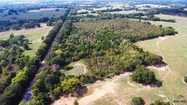 000 S Inside County Road 2389, Pickton, TX 75471 (MLS #10117462) :: The Wampler Wolf Team
