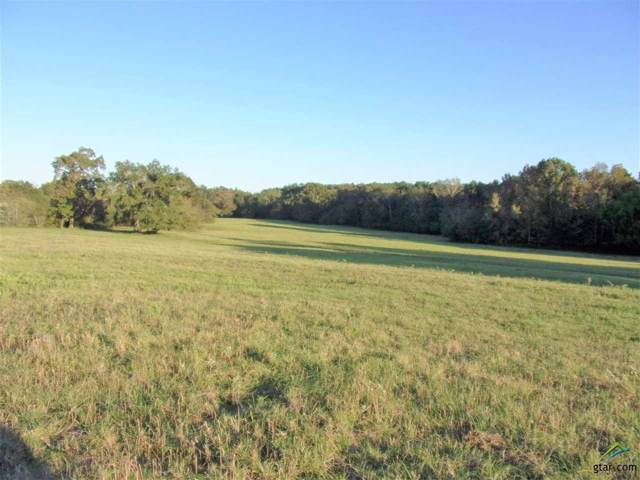 TBD Lot 1 Hwy 204, Jacksonville, TX 75766 (MLS #10117496) :: The Wampler Wolf Team