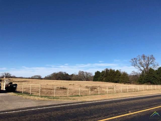 5445 E Farm To Market Road 344, Tyler, TX 75703 (MLS #10117621) :: The Wampler Wolf Team