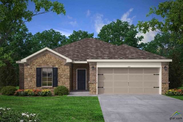 17397 Stacy Street, Lindale, TX 75771 (MLS #10117690) :: The Wampler Wolf Team