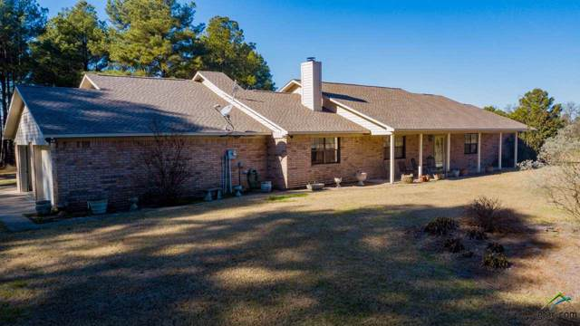 2802 Red Maple Rd, Big Sandy, TX 75755 (MLS #10117778) :: The Wampler Wolf Team