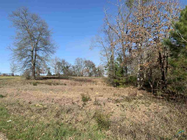 TBD Cr 1218, Pittsburg, TX 75686 (MLS #10118505) :: Griffin Real Estate Group