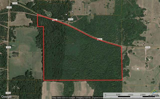 0000 Cr 3256, Quitman, TX 75783 (MLS #10118601) :: Griffin Real Estate Group
