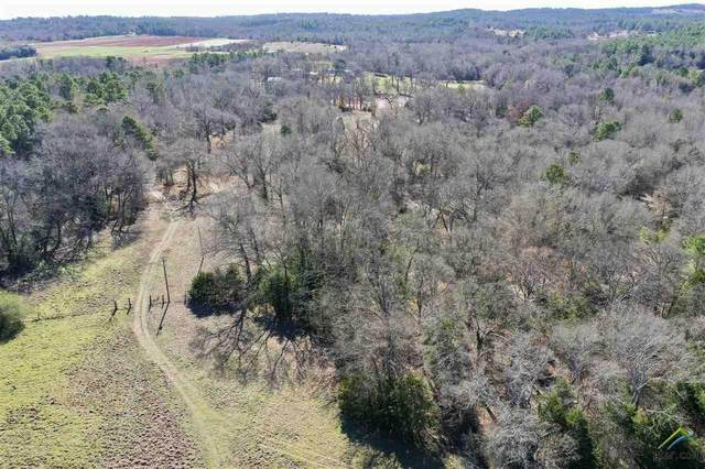 20931 County Road 4147, Lindale, TX 75771 (MLS #10118752) :: RE/MAX Professionals - The Burks Team