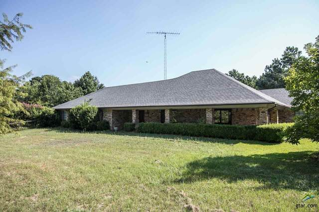 13312 County Road 46, Tyler, TX 75704 (MLS #10118783) :: The Wampler Wolf Team
