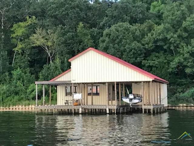 173 N Lake Bluff Dr., Bullard, TX 75757 (MLS #10118828) :: RE/MAX Professionals - The Burks Team