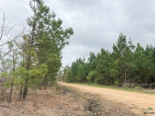 0 Cr 4429, Avery, TX 75554 (MLS #10118888) :: RE/MAX Professionals - The Burks Team