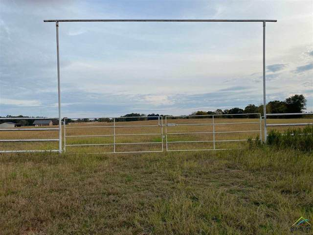 0000 Vz County Road 1512, Van, TX 75790 (MLS #10118918) :: RE/MAX Professionals - The Burks Team