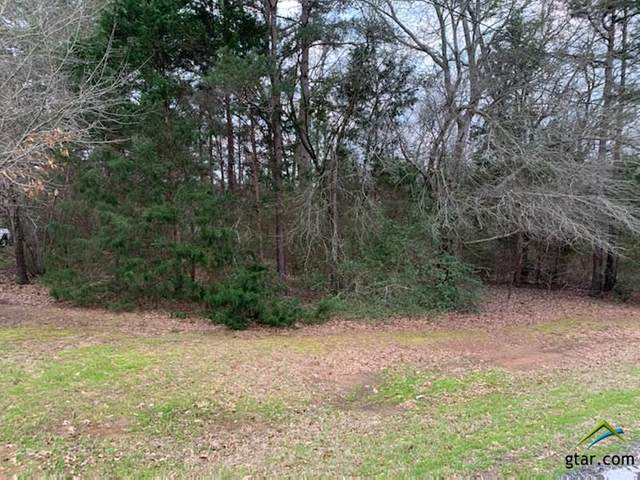 TBD Lot 36 Vicki Lynn, Troup, TX 75789 (MLS #10118991) :: The Wampler Wolf Team