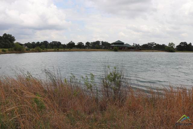lot 34 Pr 2712, Mt Pleasant, TX 75455 (MLS #10119035) :: The Wampler Wolf Team