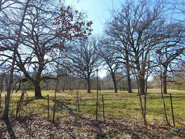TBD County Road 3920, Mt Pleasant, TX 75455 (MLS #10119065) :: The Wampler Wolf Team