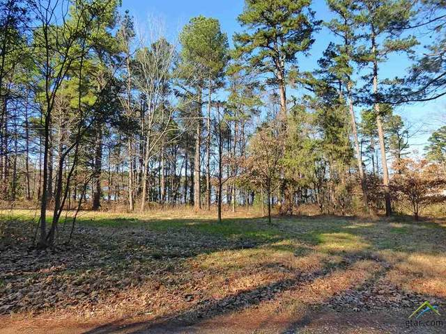 TBD County Road 2735, Pittsburg, TX 75686 (MLS #10119083) :: The Wampler Wolf Team