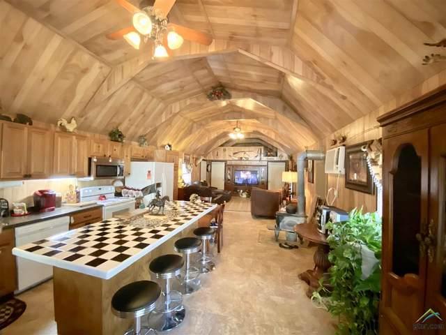1738 White Cedar Road, Big Sandy, TX 75755 (MLS #10119132) :: RE/MAX Professionals - The Burks Team
