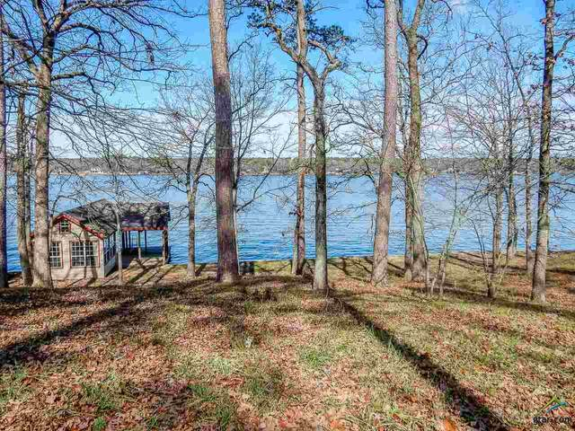 Lot 14 Hickory Hills Lane, Scroggins, TX 75480 (MLS #10119174) :: The Wampler Wolf Team