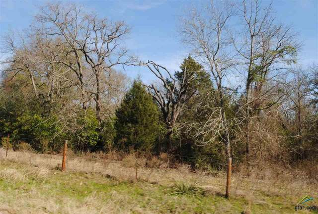 TBD County Road 427, Tyler, TX 75704 (MLS #10119209) :: RE/MAX Professionals - The Burks Team