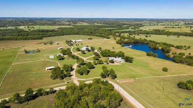 16489 County Road 665, Farmersville, TX 75442 (MLS #10119380) :: RE/MAX Professionals - The Burks Team