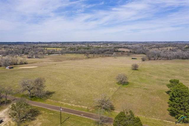 TBD Cr 43, Tyler, TX 75704 (MLS #10119421) :: Griffin Real Estate Group