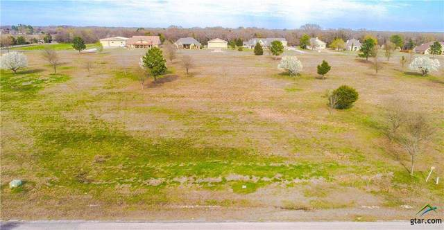 Lot 18 Pr 7005, Edgewood, TX 75117 (MLS #10119654) :: Griffin Real Estate Group