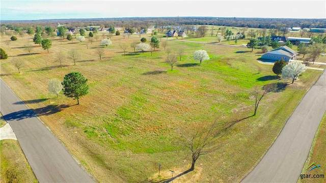 Lot 21 Pr 7005, Edgewood, TX 75117 (MLS #10119656) :: Griffin Real Estate Group