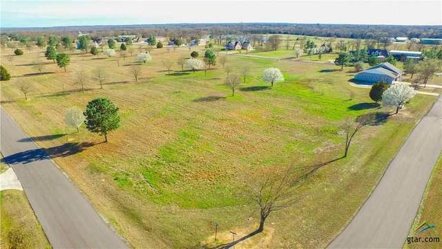 Lot 32 Pr 7005, Edgewood, TX 75117 (MLS #10119708) :: Griffin Real Estate Group