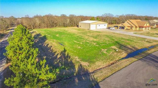 Lot 39 Pr 7005, Edgewood, TX 75117 (MLS #10119709) :: Griffin Real Estate Group