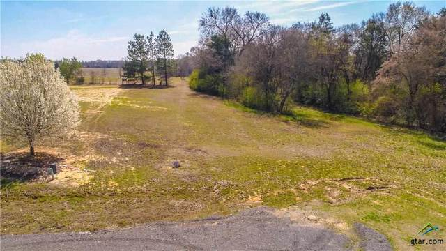Lot 18 Pr 7001, Wills Point, TX 75169 (MLS #10119724) :: Griffin Real Estate Group