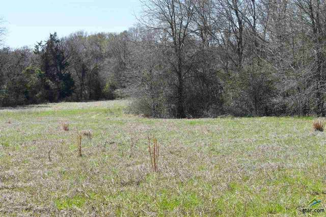 TBD Acr 2610, Tennessee Colony, TX 75861 (MLS #10119971) :: The Wampler Wolf Team