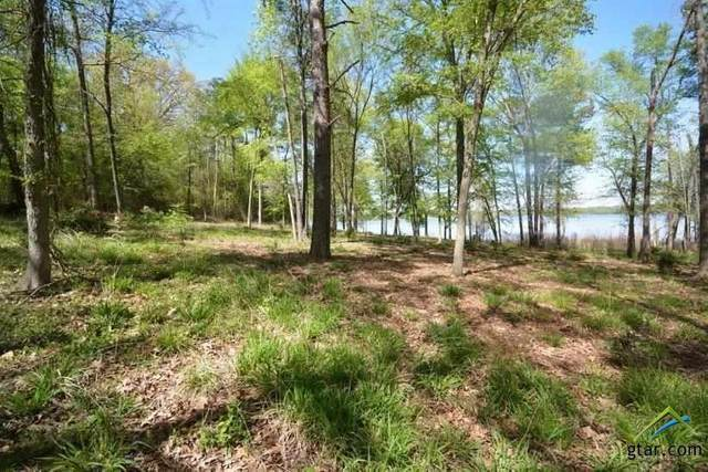 1 Sterling Shores Drive, Scroggins, TX 75480 (MLS #10120226) :: Griffin Real Estate Group
