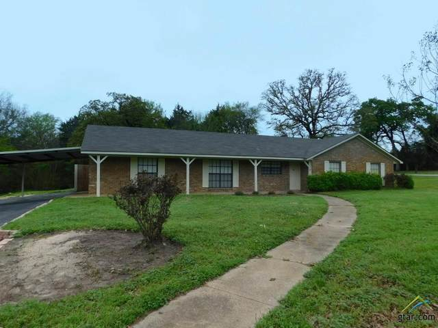 5834 S State Hwy 37, Mineola, TX 75773 (MLS #10120312) :: The Wampler Wolf Team
