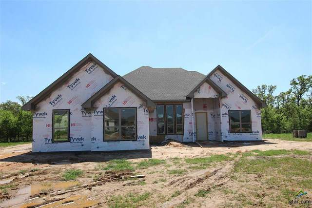 21553 Castle Rock, Bullard, TX 75757 (MLS #10120334) :: The Wampler Wolf Team