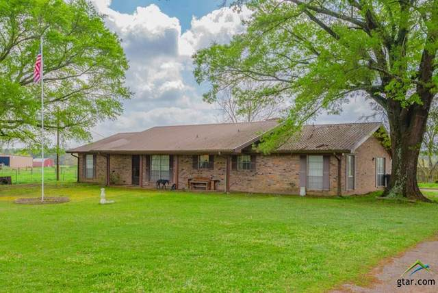 444 County Road 4104, Daingerfield, TX 75638 (MLS #10120400) :: The Wampler Wolf Team