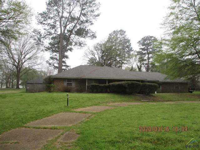 19035 Country Estates Circle, Flint, TX 75762 (MLS #10120422) :: RE/MAX Professionals - The Burks Team