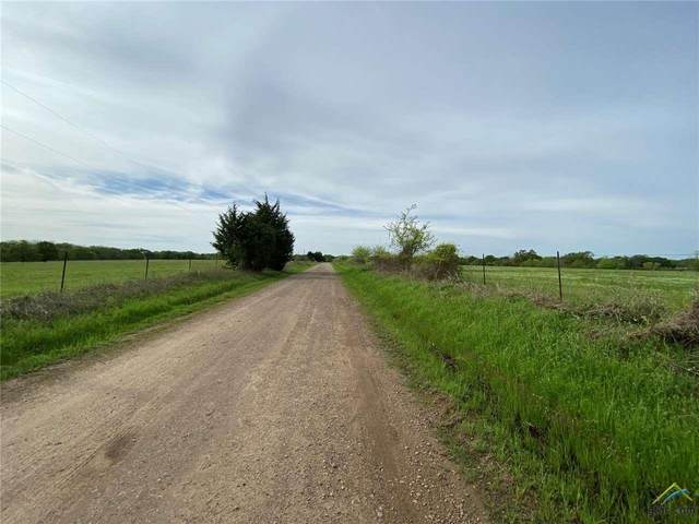 000 County Road 3561, Dike, TX 75437 (MLS #10120425) :: The Wampler Wolf Team