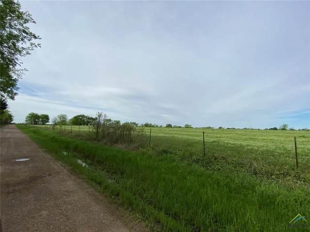 000 County Road 3561, Dike, TX 75437 (MLS #10120426) :: The Wampler Wolf Team